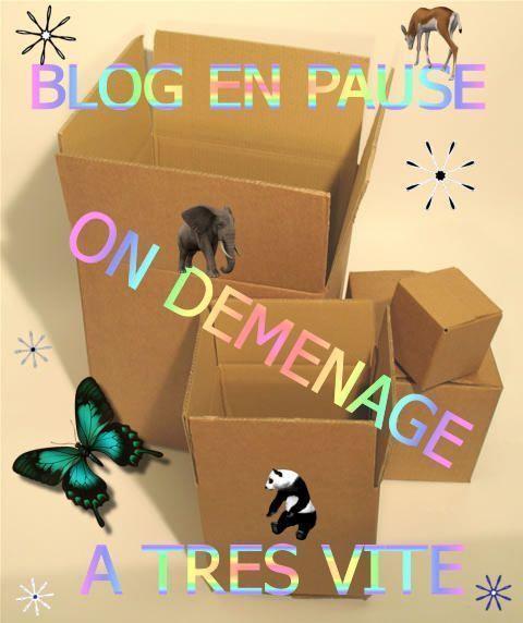 http://chtilili.c.h.pic.centerblog.net/kdrr32i0.jpg