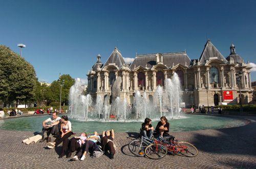 musée lille beaux arts